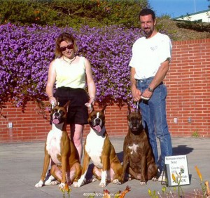 Christina Ghimenti and her husband of almost 20 years, pose with three of their Boxers at the American Temperament Test, in July 2000. Dogs from left: Penny, Booker T, and Crystal. Photo courtesy of Christina Ghimenti and PawPrintBoxers.com