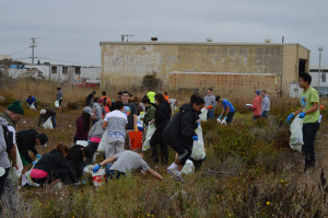 Volunteers clean up the shoreline at the 30th Annual Creek to Bay Day
